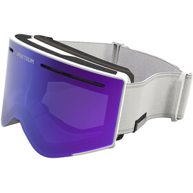 Spektrum Helags Goggles cool grey